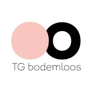Theathergroep Bodemloos